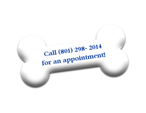 Call for an appointment at Parrish Creek Veterinary Clinic, Centerville, Bountiful, Farmington, Utah